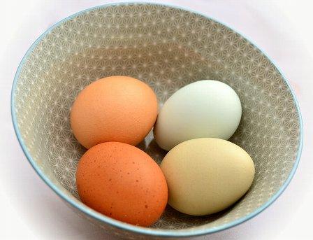 egg-653301_640