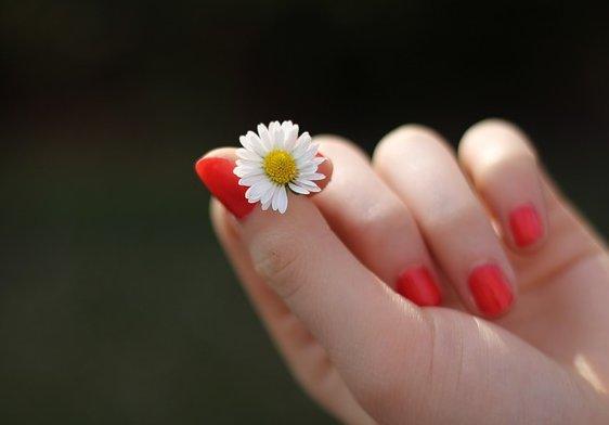 hand-302802_640